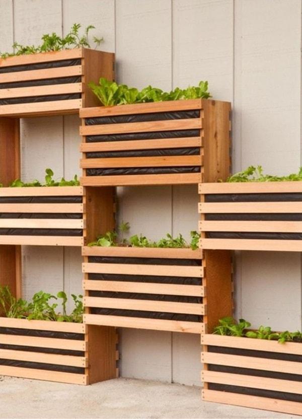 Mur végétal intimité