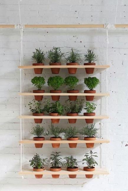Mur végétal suspendu